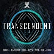 Prolix: On the Transcendent