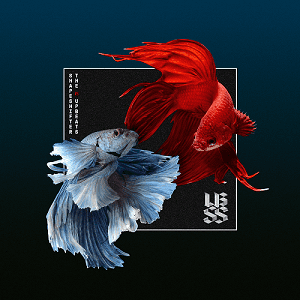 UBSS-Cover-iTunes---PNG